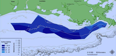 Map of surface salinity data