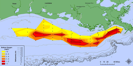 Map of bottom-water dissolved oxygen concentrations.